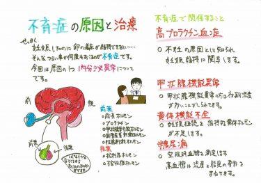 【不育症の原因と治療について① 内分泌の異常】