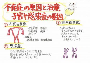 『不育症の原因と治療について② 子宮や感染症の要因について』