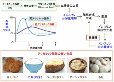 【血糖値の上昇しやすい食事と卵巣低反応(少ない採卵数)の関係】