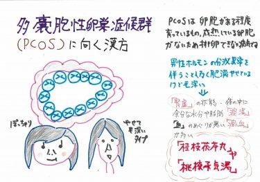 【多嚢胞性卵巣症候群に向く漢方】
