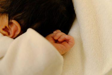 【体外受精児、14人に1人 2019年は過去最多6万598人が誕生】