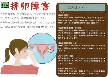 【排卵障害について】
